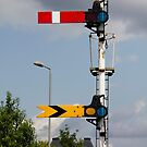 Signalling a change in the weather? by BizziLizzy