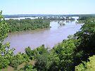 2011 Missouri River Flood by Carla Wick/Jandelle Petters