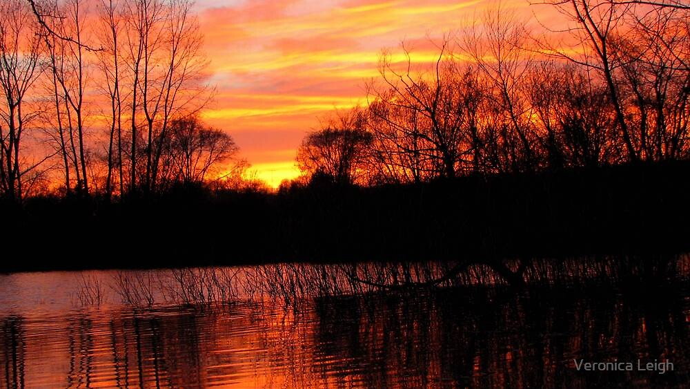 Day Ending Over the Lake by Veronica Schultz