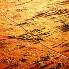 The Road Home NT Outback Australia by Ronald Rockman