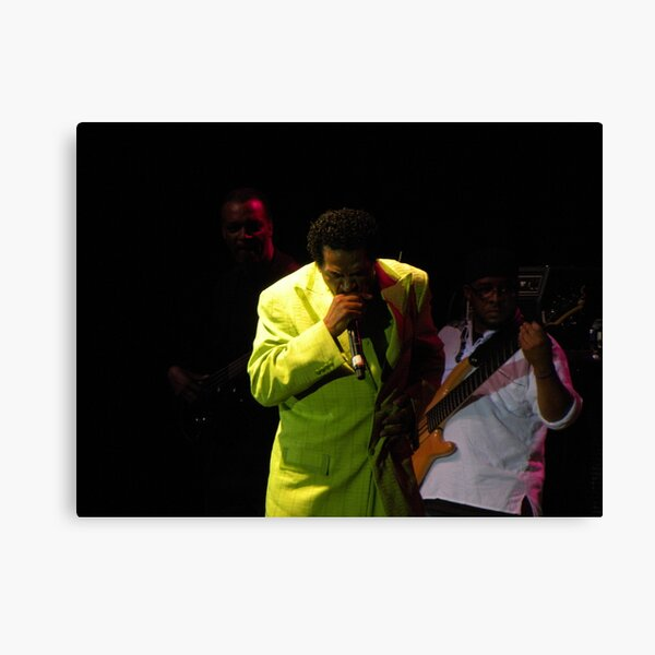 2011 MBBF Bobby Rush Plays Harmonica Canvas Print