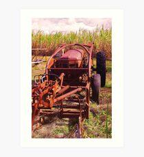 on the farm 3 Art Print