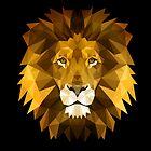 Lion by CAN CALISKAN