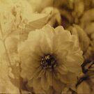 Vintage Flower 3 by babibell