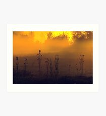 greeting the new day's dawn... Art Print