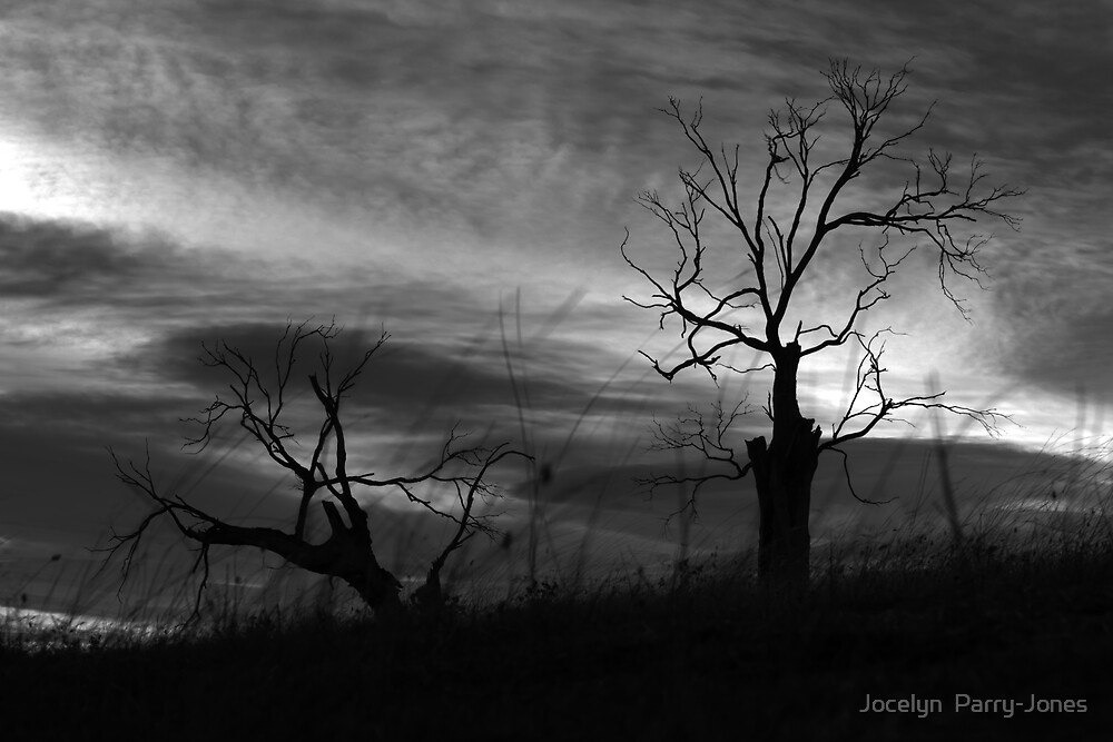 Dead and the living by Jocelyn  Parry-Jones