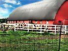 Cow Barn by Marcia Rubin