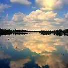 Sunlight and reflections by ienemien