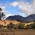 0101 Cathedral Rock, Victoria by DavidsArt