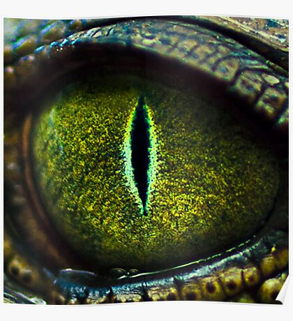 Eye of the Crocodile II [Print & iPad Case] Poster