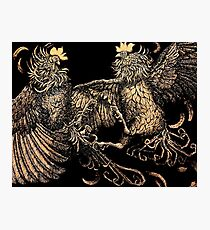Two Kings - Roosters Photographic Print