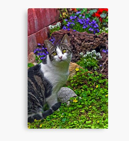 Please May I Jump Over the Fence???? Canvas Print