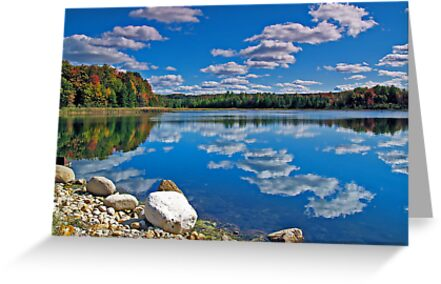 Rugg Pond Reflections by Megan Noble