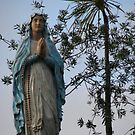 Our Lady of Lourdes, on a farm, Northland NZ by COLLECTION