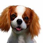 Cavalier puppy by Cazzie Cathcart