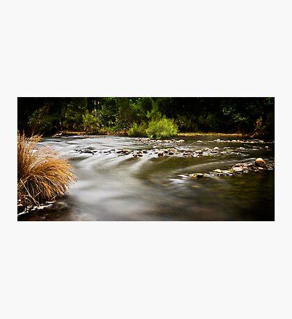 ~ flow ~ Photographic Print