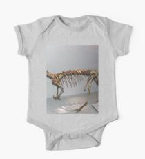 Random Coelophysis Kids Clothes