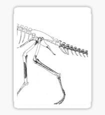Random Coelophysis Sticker
