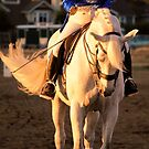 Dressage  a Golden Moment by Nancy Stafford