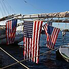 Boats, Flags & God Bless America! by Lee d'Entremont