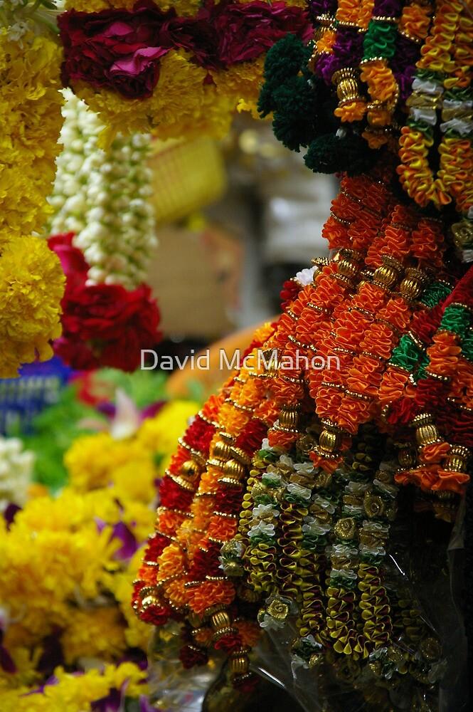 Floral Archway by David McMahon
