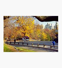 Autumn in Central Park  Photographic Print