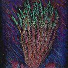 Happy Glowing Ocotillo by Brian Schnackel