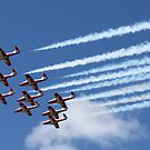 Snowbirds by Scott Paterson