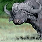 Cape Buffalo,  Majestic force of nature  by Shawn Swain