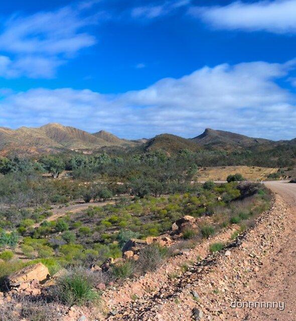 Flinders Ranges by donnnnnny