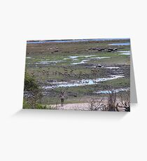 Chobe overview Greeting Card