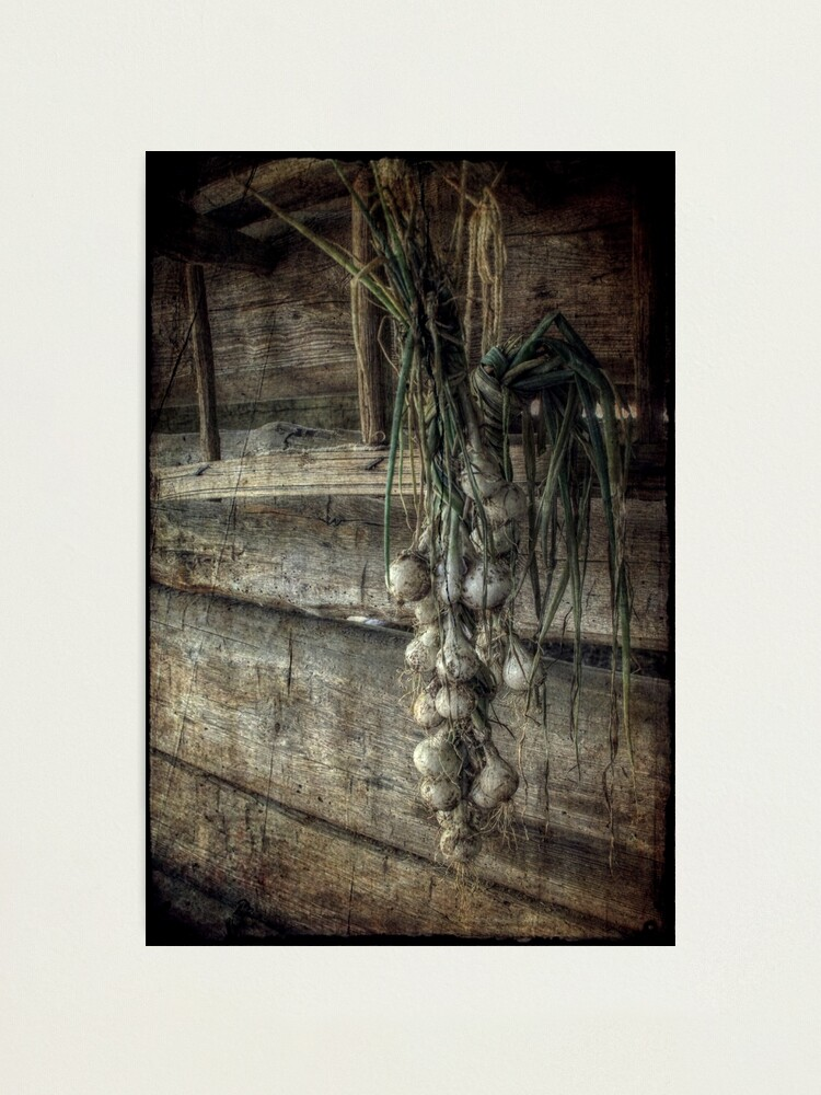 Alternate view of The Harvest Photographic Print