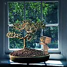 Danbos tree by 1chick1
