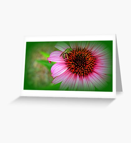 Bee on Me Greeting Card