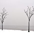 Couple of Twig Trees by hmx23