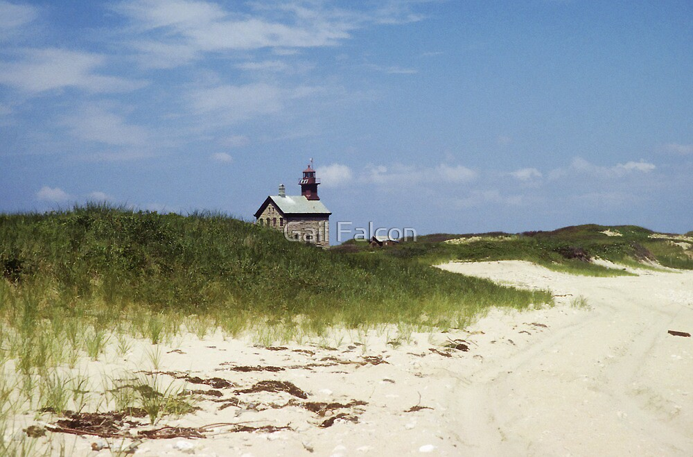 North Light by Gail Falcon