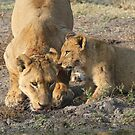 Mom that was good ,i was so thirsty! by Anthony Goldman