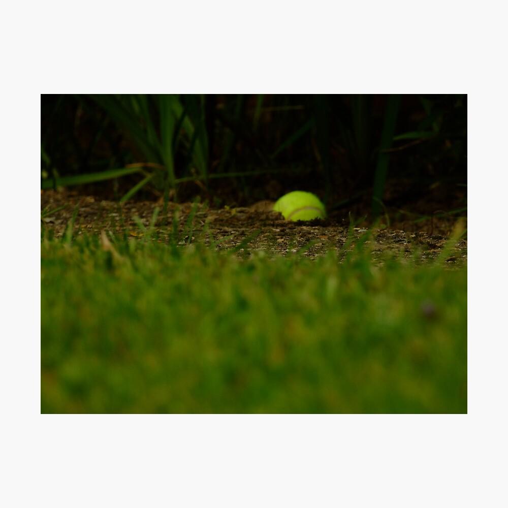 Lawn tennis Fotodruck