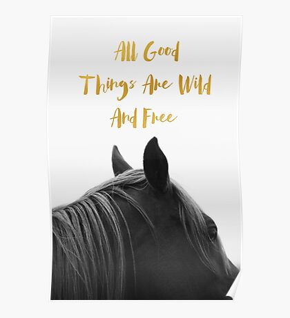 All Good Things - Horse Poster