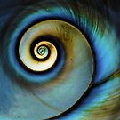 Spiraling Dream by Bill Colman