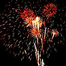 4th of July Fireworks by Eileen Brymer