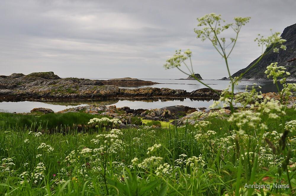 Cloudy day by the Beach by Annbjørg  Næss