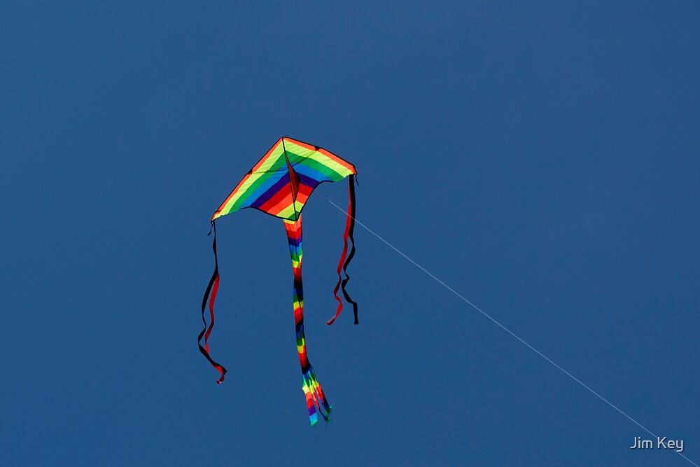 High as a Kite by Jim Key