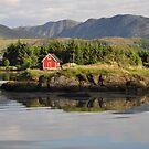 Red little house by Annbjørg  Næss