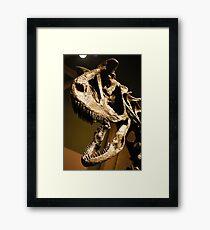 Super Carnotaurus Framed Print