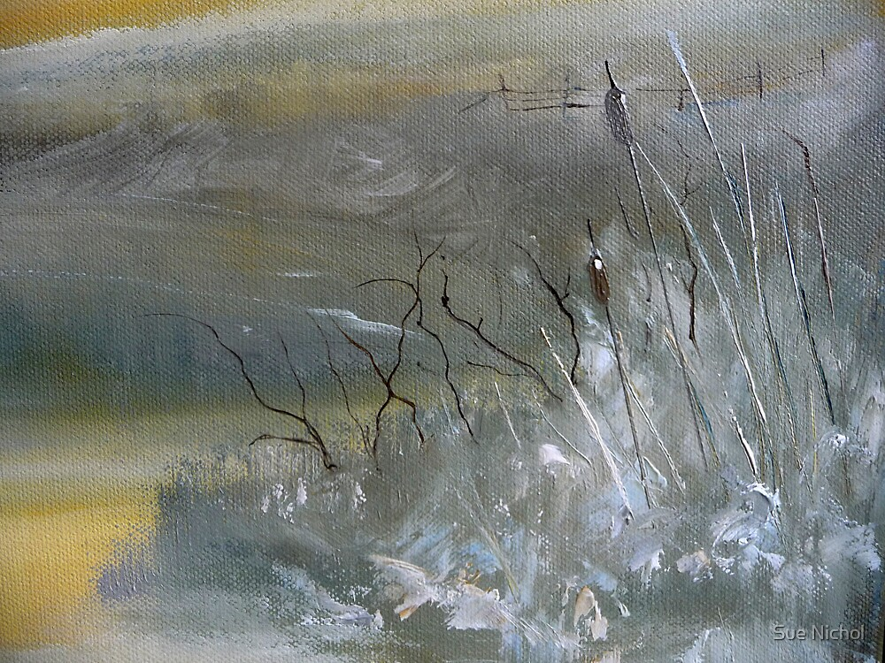 Bulrushes in Frost by Sue Nichol