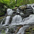 Lower Hornsbeck Creek Falls by Stephen Vecchiotti