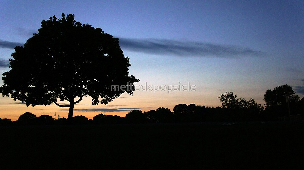 Sunset Tree by Jessica Liatys