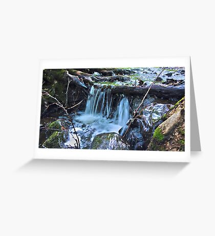 HDR Forrest Waterfall Greeting Card