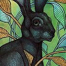 The Hidden Hare by Lynnette Shelley